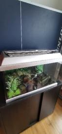 Fish tank 60l