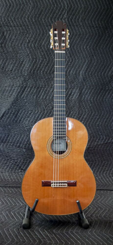 Pavan TP-20-64 Classical Guitar