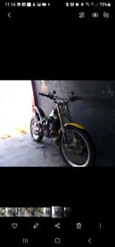 Scorpa 272cc trials bike