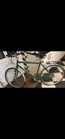 Raleigh Oakland Bike