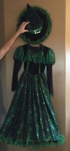 Halloween Costume.  Witch Girls size 10-12