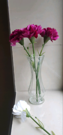Pink Artificial Flowers with Glass Vase Gift