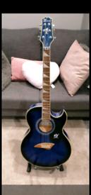 Lindo Org-SL Guitar