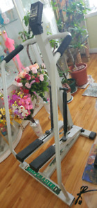 Stepper Weider Shapemaster