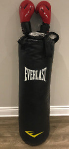 Everlast boxing bag , ATF boxing gloves
