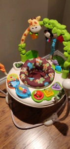 Fisher Price Jumperoo $30 - excellent condition
