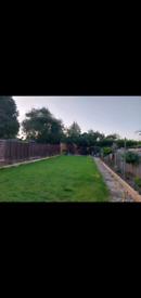 Proffesional Landscape Gardener £25phr
