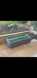 Garden Planters £40 each first come first served pick up only