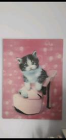 3D CAT PICTURES
