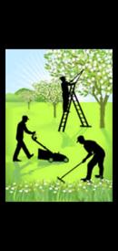 M & h gardening services