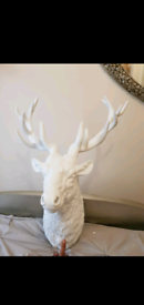 Fabulous Large White Stags Head Brand New