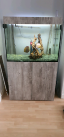 Complete Discus set up for sale