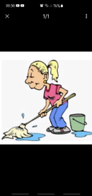 Cleaning service/private houses and offices