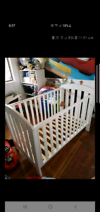 Boori baby cot