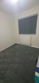 Single Room available to share with young professional and family