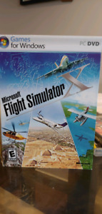 Microsoft flight simulator *Bnib*