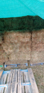 Grass Mix Square Hay Bales