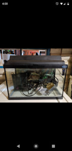 10 gallon fish tank with good/lights and accessories