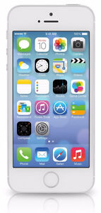 Apple iPhone 5S Silver 16GB in Great Condition (Telus/Koodo)