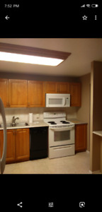 Kitchen cabinets, pantry, counter, sink, and faucet for sale