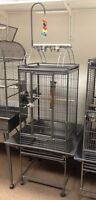 Bird Cages, Food, Toys & Accessories. Parrot Starter Kits