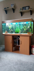 240l tank complete with everything