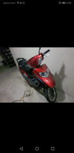 Moped 2013 taotao 150cc scooter