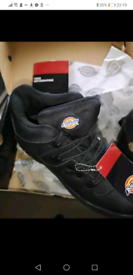 Dickies boots size10