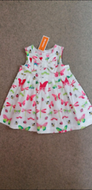 New Baby Girls Butterfly/Bug Empire Summer Dress by Bluezoo Age: 3-6 m