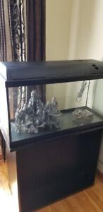 aquarium 33 gal avec meuble