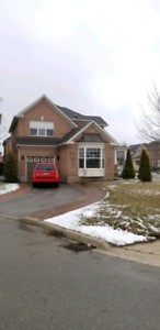 Beautiful 5 bedroom, 3.5 bath house for rent in oakville