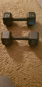 Exercise weights for sale