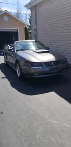 FORD MUSTANG GT 2004 40TH