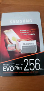 256gb micro SD card