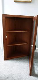 Mahogany Veneer Corner Cabinet with 2 Shelves