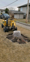 Quality Low Cost Stump Grinding/Stump Removal