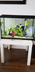 20 gal full setup with stand $140.