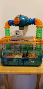 3 Months Old Syberian Hamster with cage