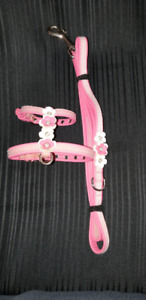 XXS Puppy Harness and Leash