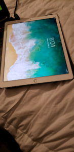 Ipad pro 12.9 inch second generation 500gb LTE and wifi