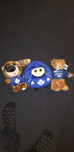 Assorted teddy bear collection