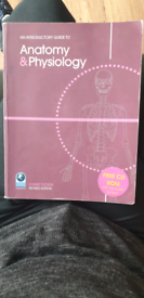 ITEC Anatomy & Physiology