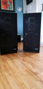 Large floor speakers