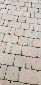 Interlock brick (1200SqFt/1.70$/SqFt)