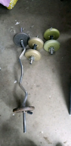 Curl bar and weights