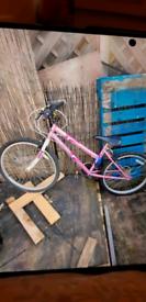 Bike 24inch