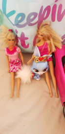 Barbies, accessories, car and palace pet - £5