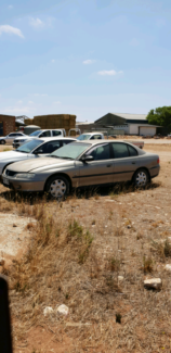 VX commodore Tailem Bend The Coorong Area Preview