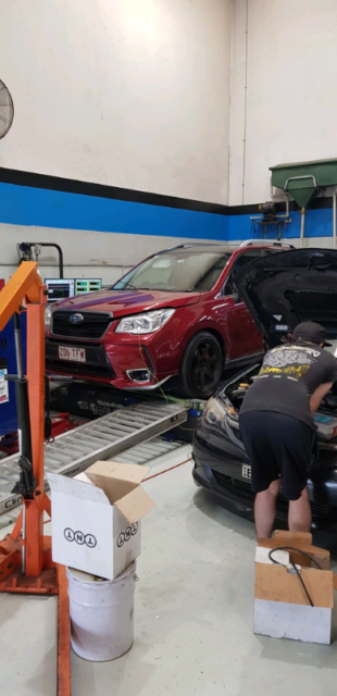 SJ Forester XT Premium STI upgraded | Cars, Vans & Utes