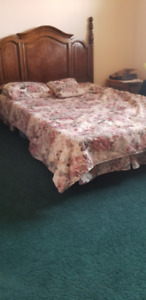 Queen Size Tapestry Comforter with matching Bedskirt, and more